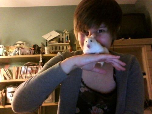 i love this hamster and everything about her omg