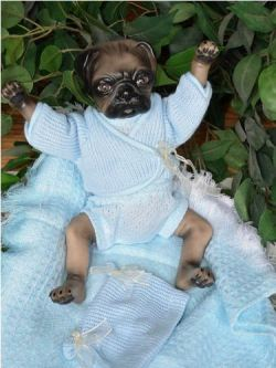 Despo for this creepy pug-human doll from ebay. Psych! I already have a real pug baby that I treat like a human baby, but not quite so much as that lady who got internet famous for breastfeeding her pug.