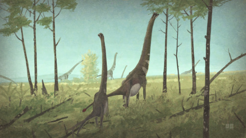 Euhelopus. No, you hell o' puss. This is the sixth quick sauropod herd painting; Euhelopus zdanskyi a medium sized sauropod from the Early Cretaceous of China.