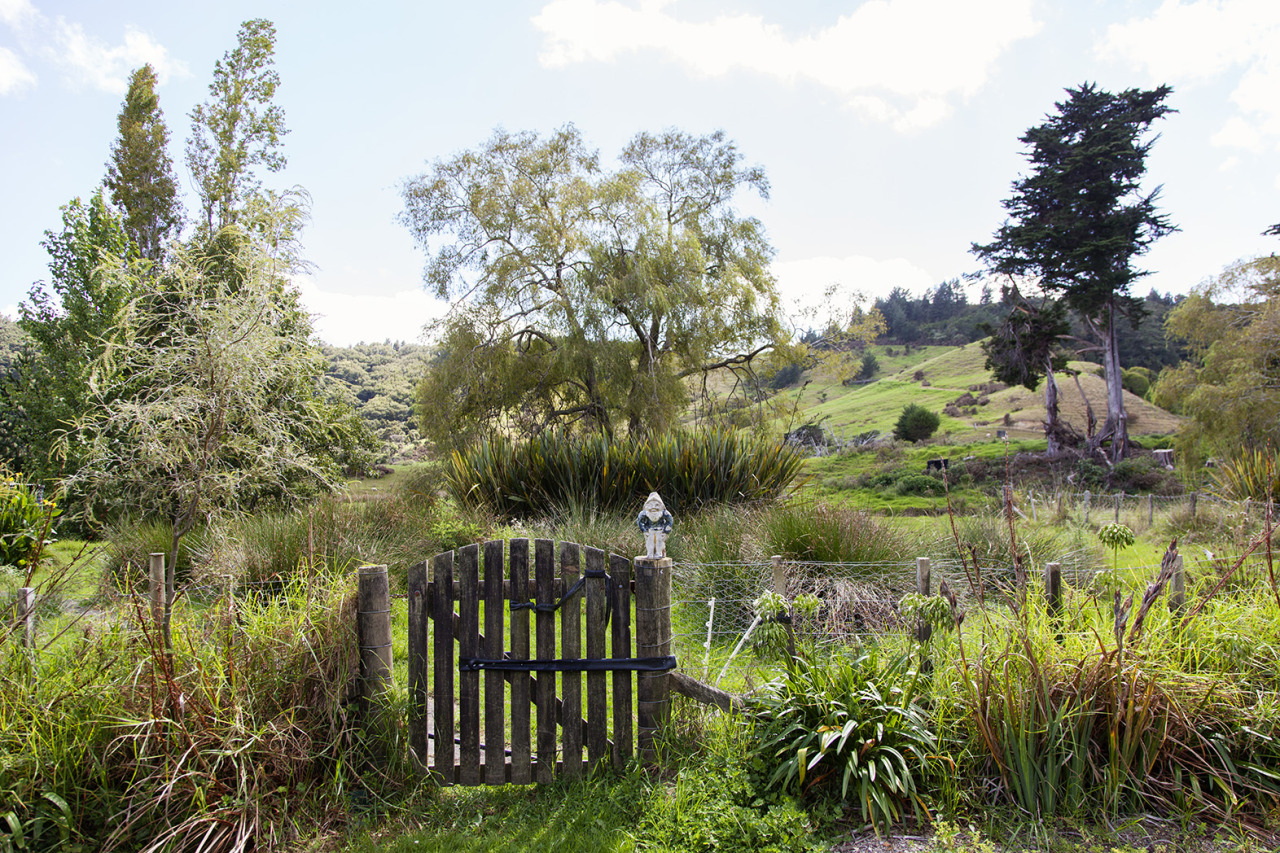 http://theselby.com/galleries/special-projects/matakana-farmers-market-and-the-puhoi-library-in-new-zealand/