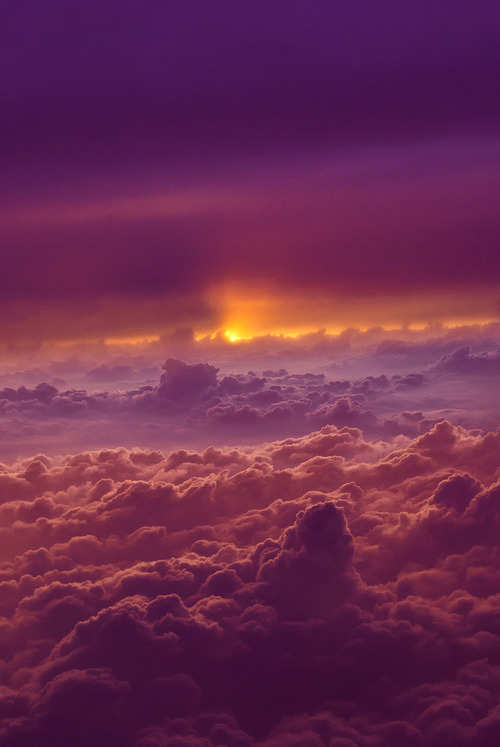 disminucion:  (by Scott Stufflebeam)