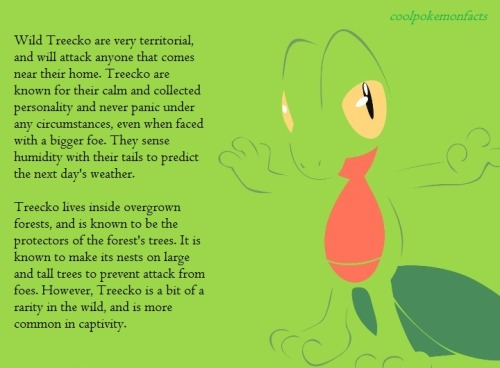 coolpokemonfacts:  Artist Treecko by request.