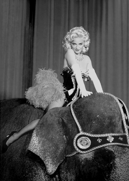 #Madonna Looking Gorgeous Riding an Elephant