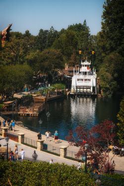 Smooth Waters  photographer: Lindsey Garrett  location: Disneyland Park