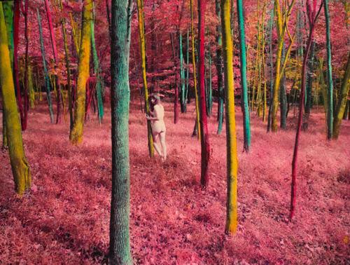 photography art artists on tumblr Shae DeTar