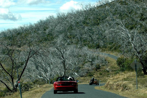 Somewhere in the Snowy Mountains. Targa D'Alpine with the MX5 Club, March 2009. Two days with some of the most entertaining roads the states of NSW and VIC have to offer.