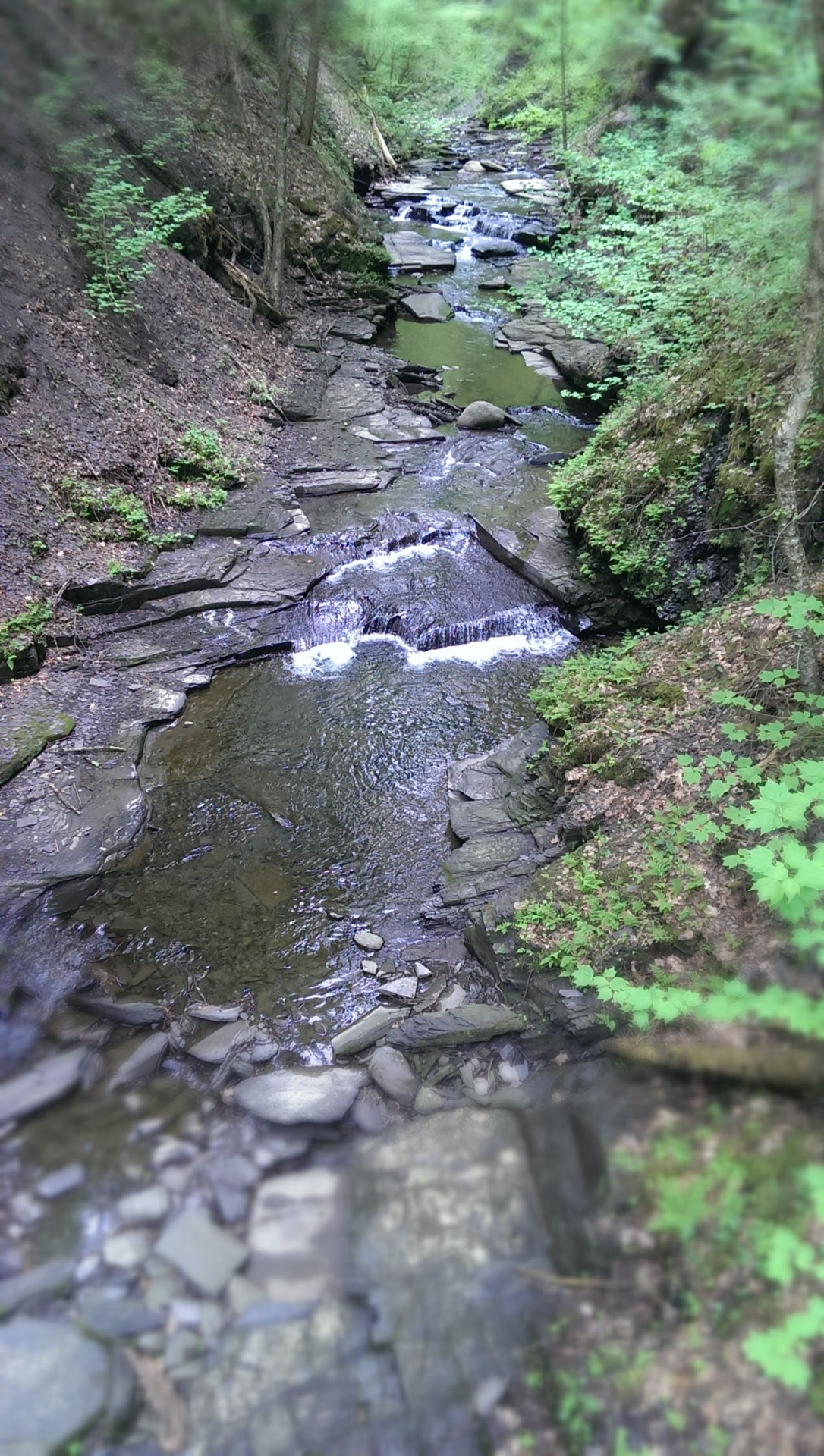Fillmore Glen, today