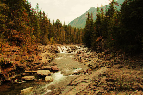 brutalgeneration:  Glacier Park (by Missoulan pictures)