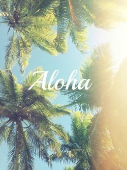 chanelssecret:  Aloha Summer Sun Follow Me | via Facebook on We Heart It - http://weheartit.com/entry/60126671/via/Tropical_cave Hearted from: https://m.facebook.com/#!/photo.php?fbid=543461442362896&id=100000971364849&set=a.159301507445560.31966.100000971364849&__user=100000971364849