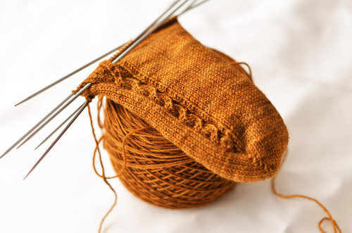 prettyknitty:  Empoisonnée (by IgnorantBliss)  One day I will learn to knit socks……..