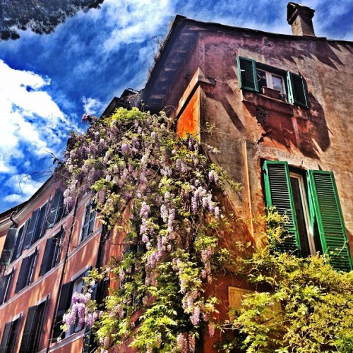 nicolaformichetti:  Beauty #roma (at Trastevere)