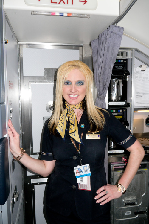 terrysdiary:  Ms. Tracy #2  airline boner