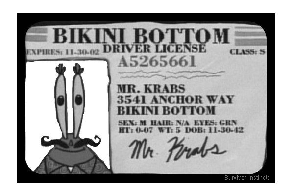 survivor-instincts:  Here's Mr Krabs's driving license, the background of his photograph is transparent, so it will show your blog background :33