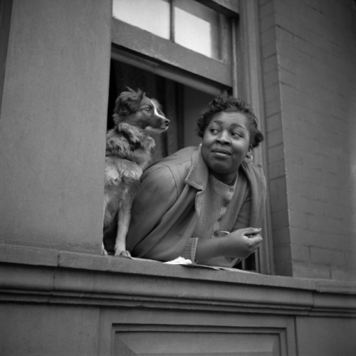 Gordon ParksA woman and her dog in Harlem, NY, 19431943Prints and Photographs Division, Library of Congress LC-USW3-024045-E23″ x 21″