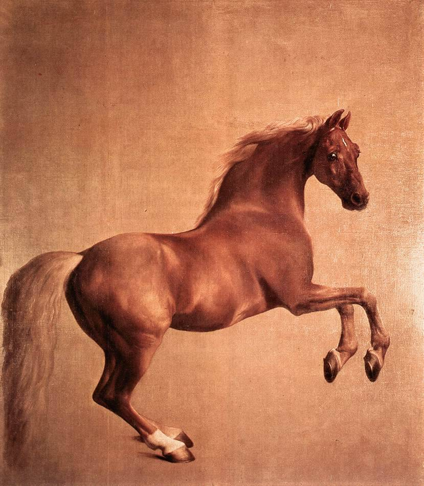 cavetocanvas:  George Stubbs, Whistlejacket, 1761-62