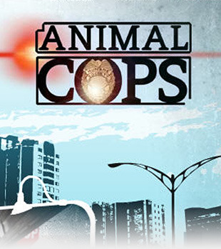 I am watching Animal Cops: Philadelphia                                      Check-in to               Animal Cops: Philadelphia on GetGlue.com