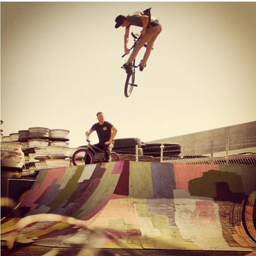 odysseybmx:  Had to regram this pic of @chase_hawk on the new ramps. Too good! @treyjonesucks pic. #fullfactoryramps