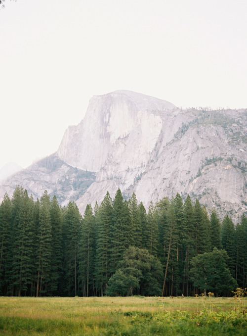 seatoabsorb:  Half Dome, Yosemite National Park, CA  21 days. Exactly 3 weeks. Whoa.