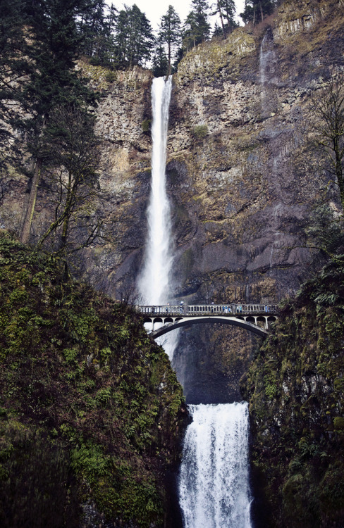 definitelydope:  Multnomah Falls (by Meg Brooke)