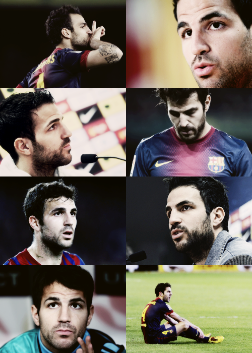 anon asked: 8 photos of Cesc Fàbregas