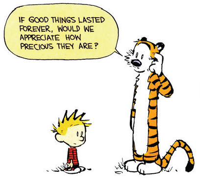 vanilla-candles:  hobbes <3