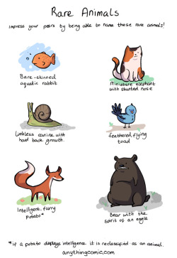 animals comic anythingcomic tapastic rare animals anything about nothing this is getting silly now