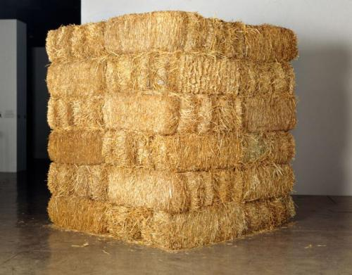 Cildo Mereiles, Thread (fio), 48 bales of hay 1 18-carat gold needle 100 meters of gold thread Dimensions  72.35 x 71.33 x 84.2 inch, 1990-1995.
