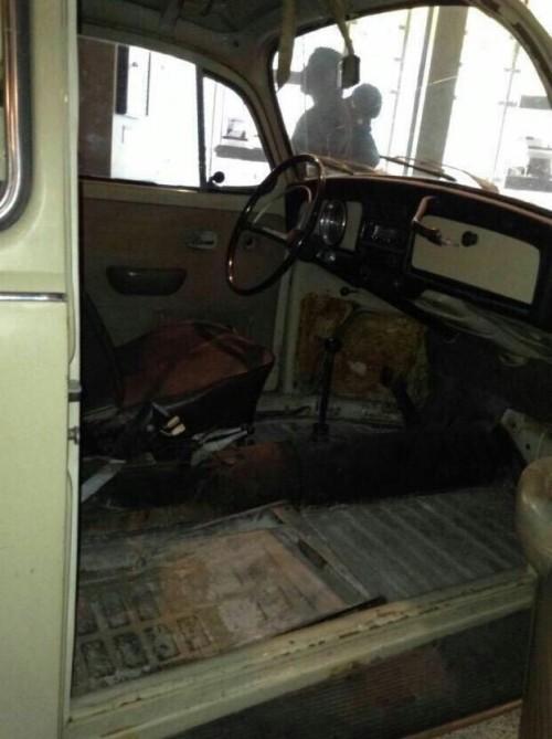 Ted bundy Theodore bundy serial killer hybristophilia tcc True crime True crime community car