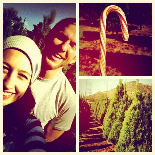 Christmas tree picking with the fam bam @gumby925 @jessicafasho #bringsbackmemories #christmastime #fambam #babyethanneedsaninstagram #awesome