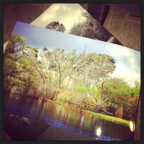Came home and my prints were ready! Going get an for my photography class