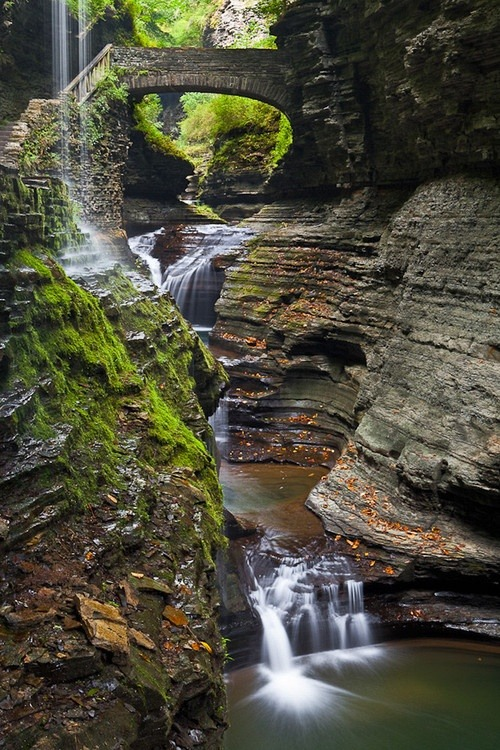 Glen Creek, Watkins Glen State Park, New York photo via lauryn