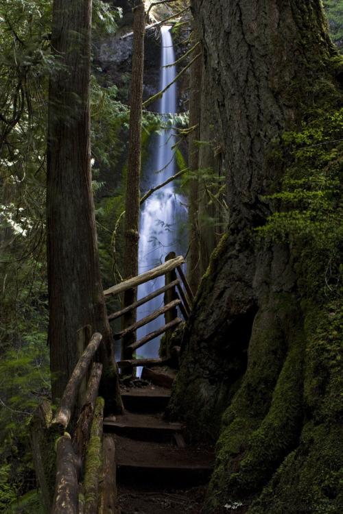 Multnomah Falls, Oregon photo via karen