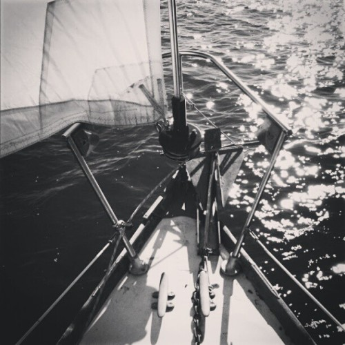 I cant wait to get Summer Breeze back in the water ♥♡ #sailing #sailboat #sail #candc #candcyacht #boat #water #bay #chesapeake #jenny #waves #happyplace #vintage #1967 #31 #saillife