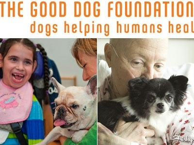 The 2012 Frisky Give Guide: The Good Dog Foundation