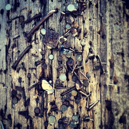 #telephone #pole #art