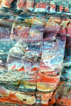 honestly-wtf:  Petrified Rocks, AZ