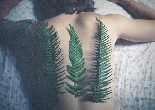 http://24.media.tumblr.com/348aad8fff72d119f82704aa67b88ca6/tumblr_mxw7uleQOI1qbospho1_500.jpg