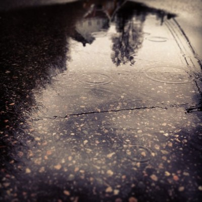 Another rainy day #rain #pond #reflection