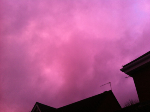 28th December 2012  Glow.  There was a very weird pink glow in the sky just before dusk today.  Unedited photo taken in a rush, so not the best quality :(  I've just realised that there are only THREE photos left of this project   *sobs uncontrollably*  What's gonna happen in 4 days time???? :(  #qsmypictoday