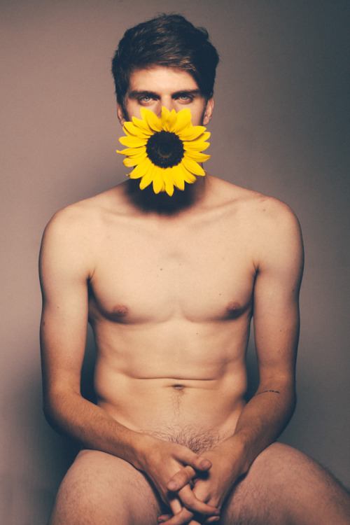 foto-maniac2:  Sun flower by Kiu Meireles