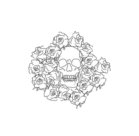 little transparent skull