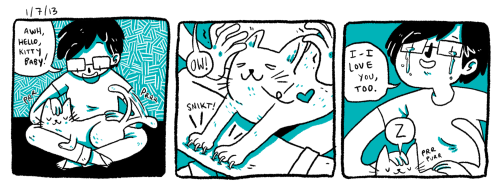 dayhaps:   1/7/13 cat love