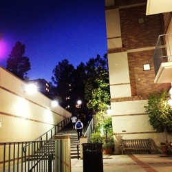 Pretty night at #UCLA