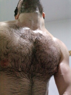 hairy-chests: