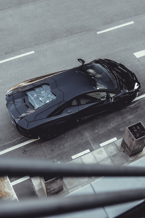 blazegryph:  auerr:  Lamborghini Aventador   I love this car to pieces.