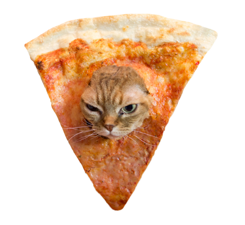 unimpressedcats:  pizza cat will haunt your nightmares