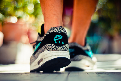 mfmichael:  sweetsoles:  Nike Air Max 1 'Atmos Elephant' (by whoretaleza)  FUCK