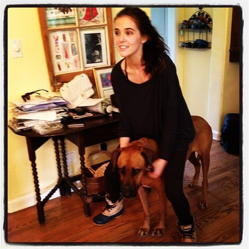 """Funny @ZoeyDeutch and my dog Juma #RhodesianRidgeback #VAMovie#VAFamily "" -marciliroff"