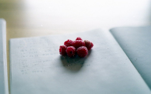 claefer:  mom got me berries by olga inoue on Flickr.