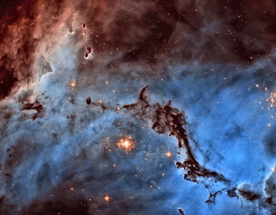 christinetheastrophysicist:  N11: Star Clouds of the LMC  Massive stars, abrasive winds, mountains of dust, and energetic light sculpt one of the largest and most picturesque regions of star formation in the Local Group of Galaxies. Known as N11, the region is visible on the upper right of many images of its home galaxy, the Milky Way neighbor known as the Large Magellanic Clouds (LMC). The above image was taken for scientific purposes by the Hubble Space Telescope and reprocessed for artistry by an amateur to win the Hubble's Hidden Treasures competition. Although the section imaged above is known as NGC 1763, the entire N11 emission nebula is second in LMC size only to 30 Doradus. Studying the stars in N11 has shown that it actually houses three successive generations of star formation. Compact globules of dark dust housing emerging young stars are also visible around the image.